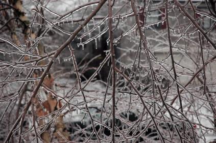 icefeb12.jpg